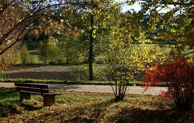 autumn-483960_640