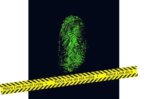 fingerprint-257325_640