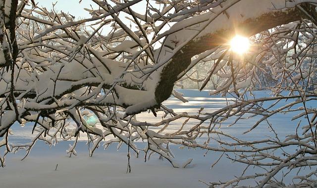 snow-383875_640
