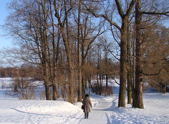 winter-372482_640