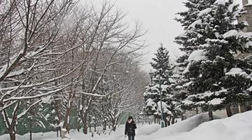 winter-613647_640