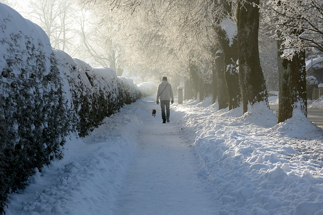 snow-587448_640