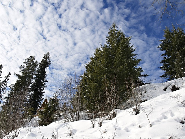winter-200900_640