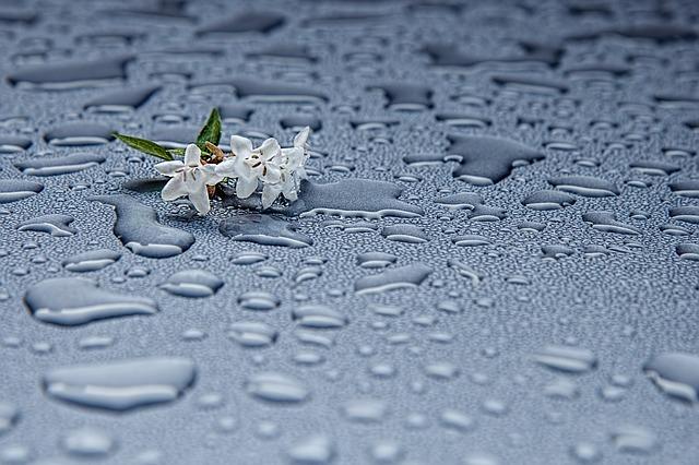 rain-drops-412465_640