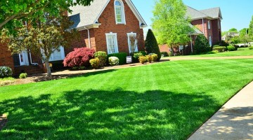lawn-care-643561_640