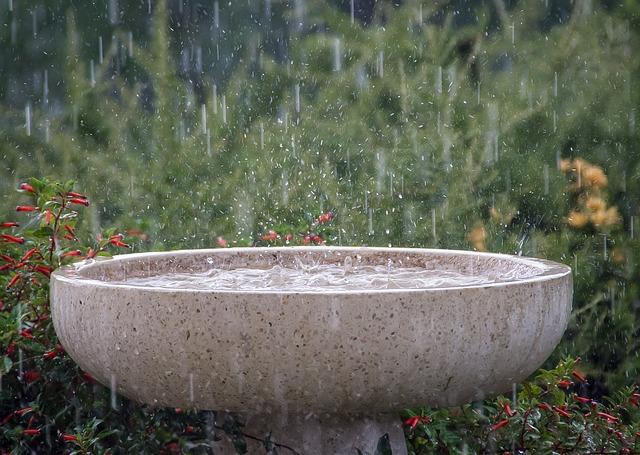 rain-645797_640