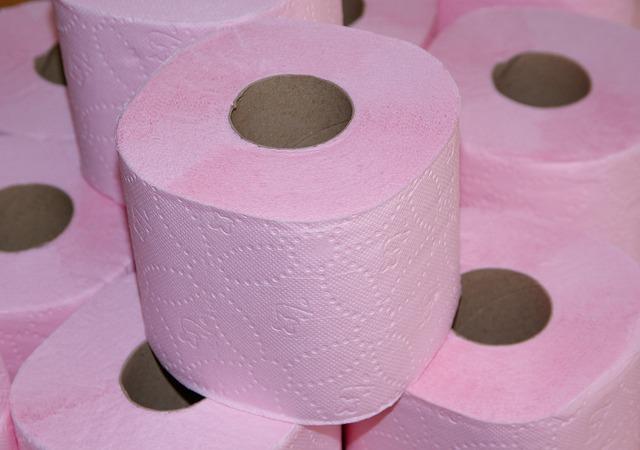 toilet-paper-671937_640