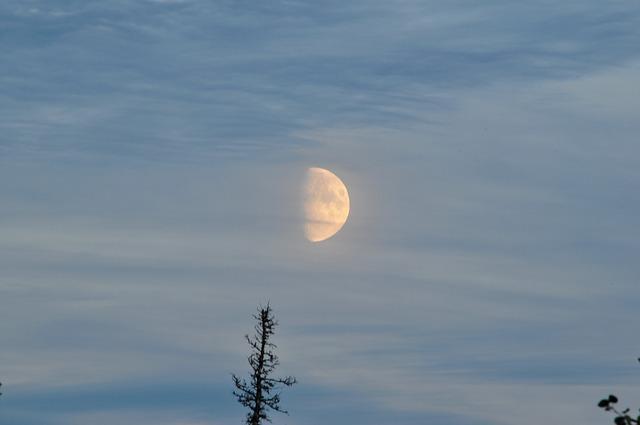 moon-436844_640