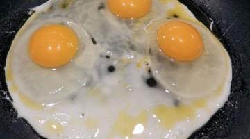 fried-eggs-533822_640