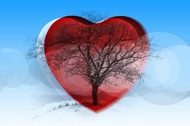 heart-1137269_640