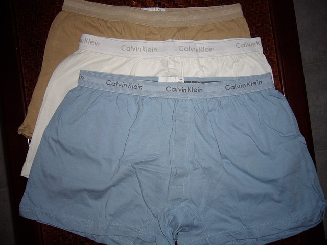 boxer-shorts-335120_640