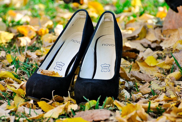 shoes-211424_640