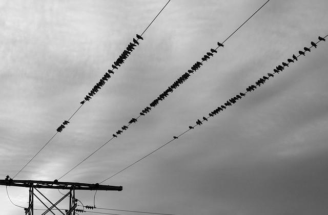 power-lines-690893_640