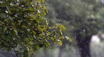 rain-829669_640