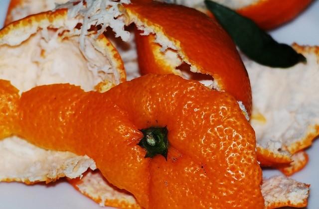orange-peel-517567_640