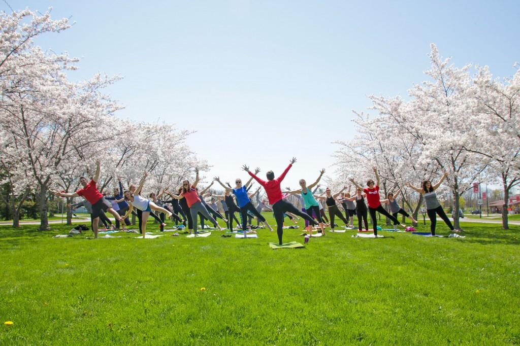 Cherry blossom yoga 2