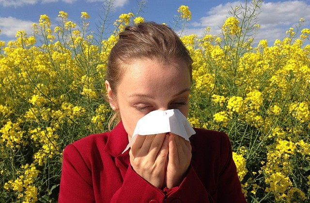 allergy-1738191_640